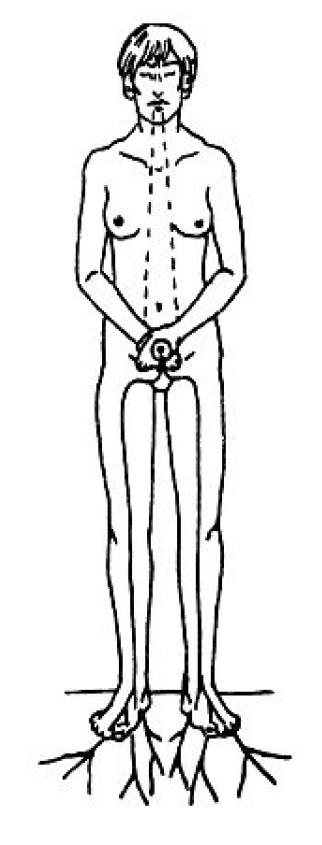 Даоски сексуални методи за съхранение на здравето, част 2 9